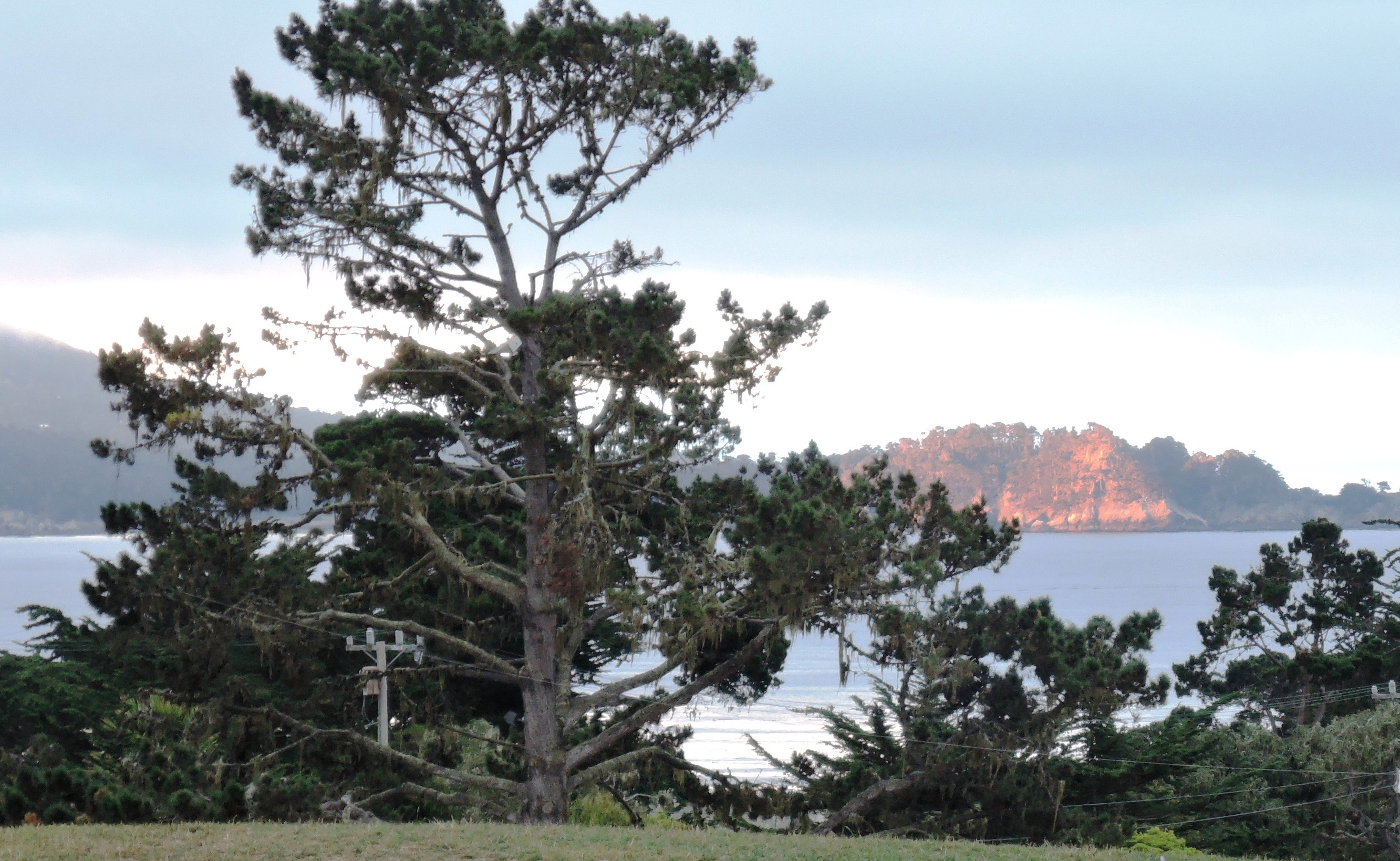 17-Mile Drive in Pebble Beach - tour d'elegance