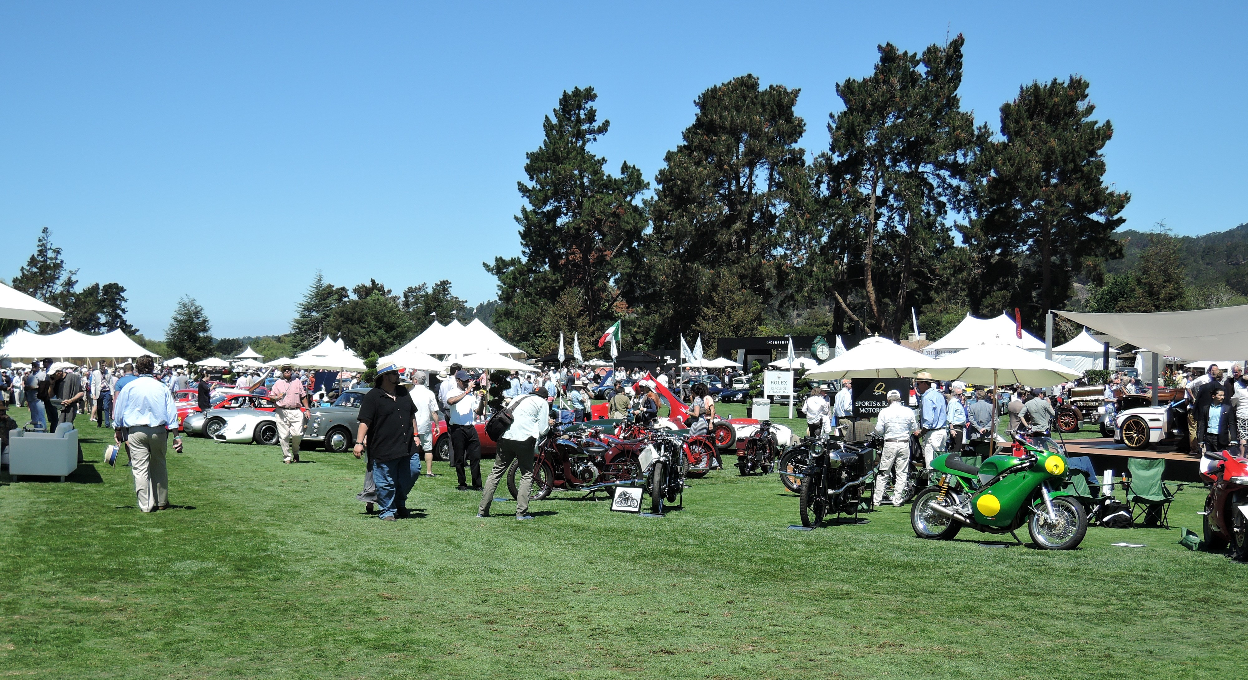 Sports and Racing Motorcycles on the field - the quail