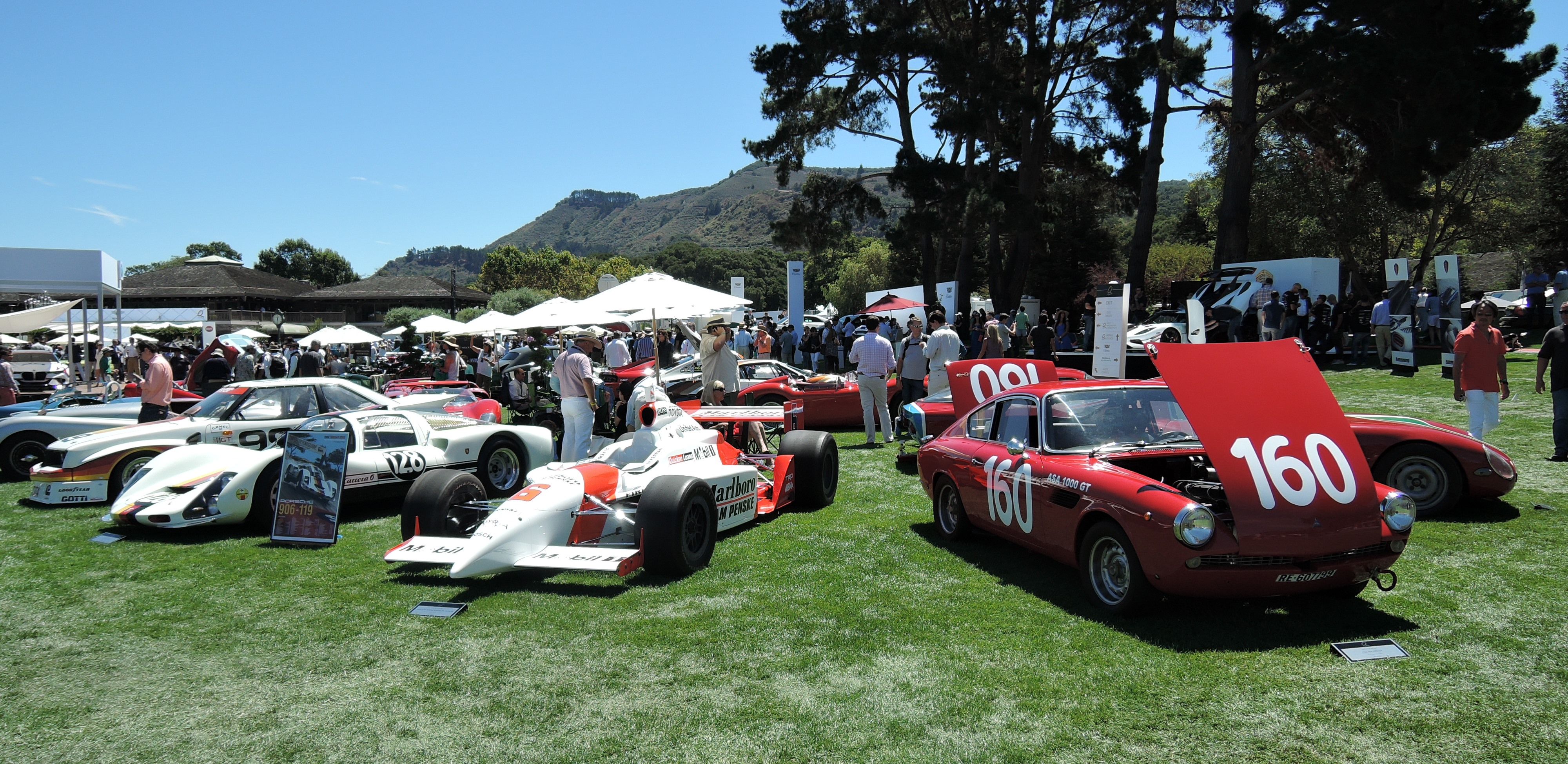 Post-War Racing Cars on the field - the quail