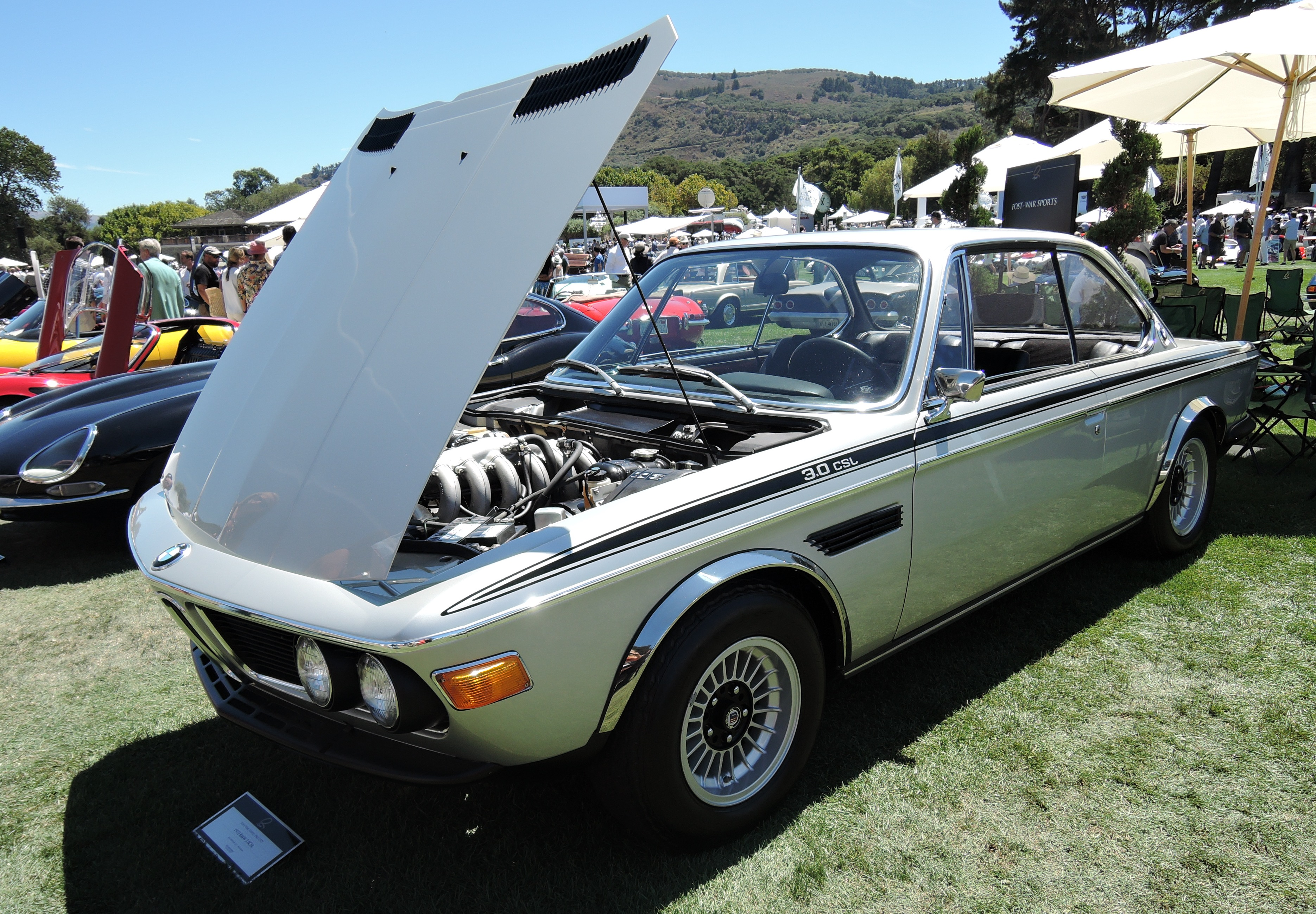 e9 1972 BMW 3.0 CSL - the quail