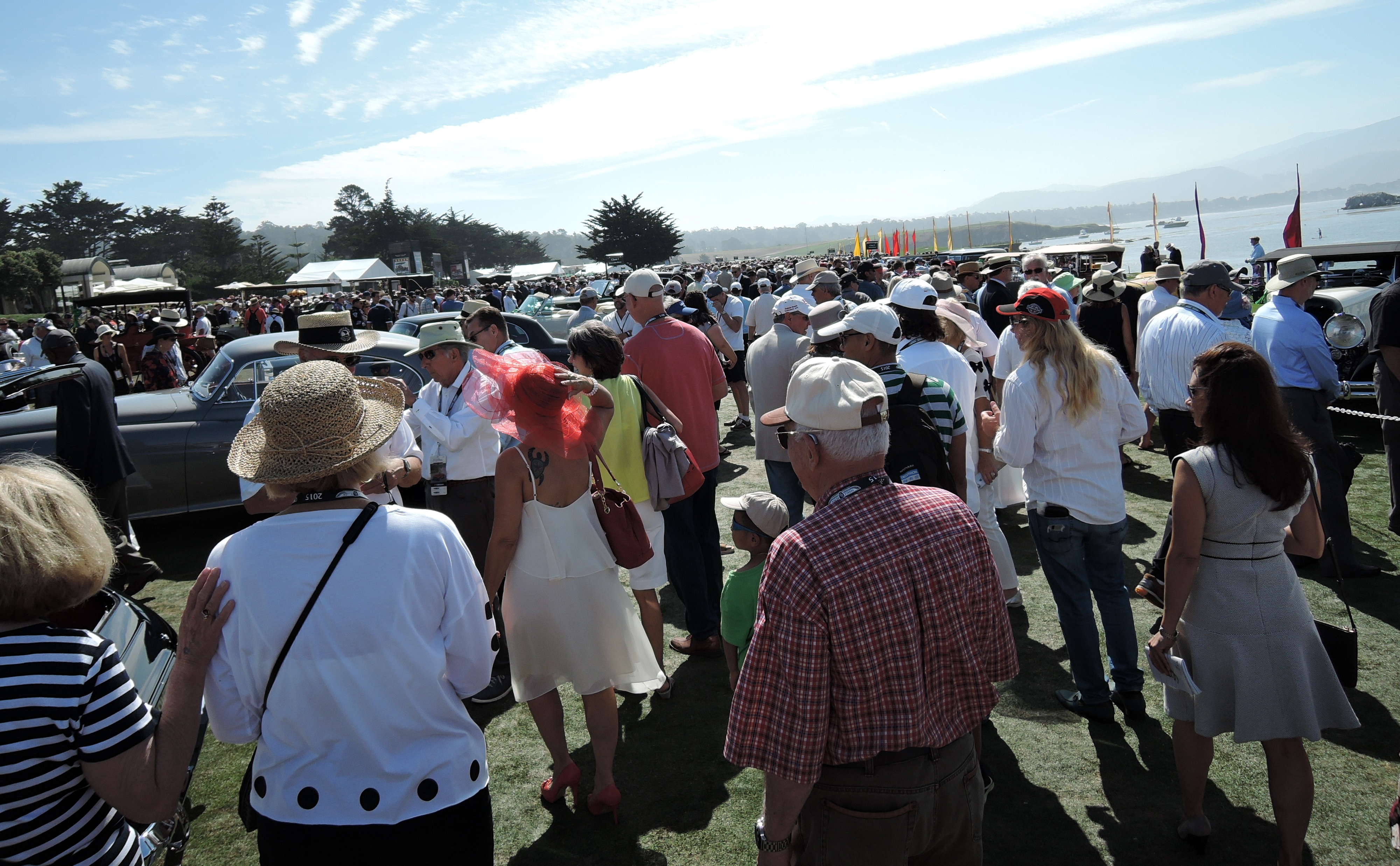 The crowd - concours d'elegance