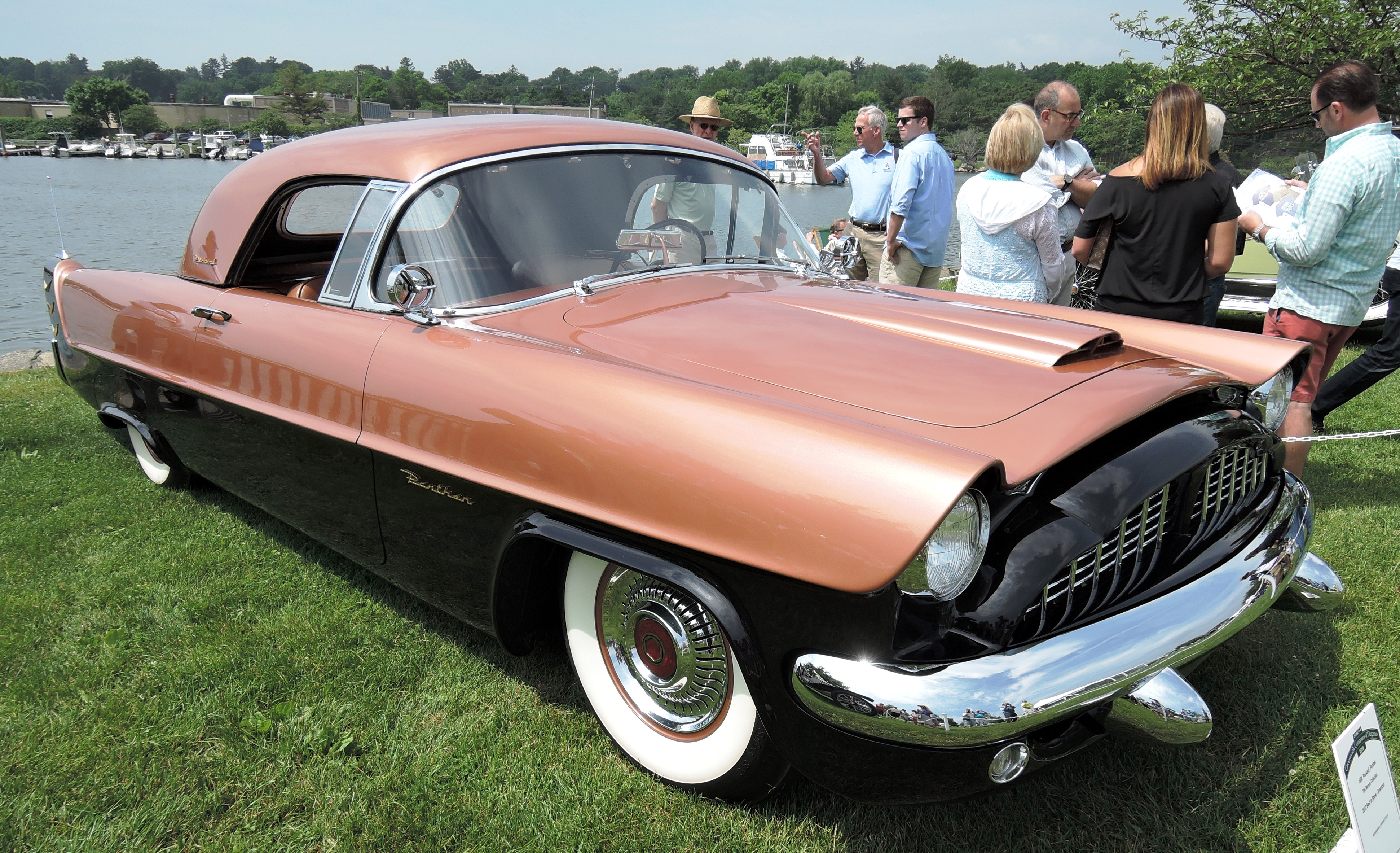 sherbert 1954 Packard Panther - greenwich concours