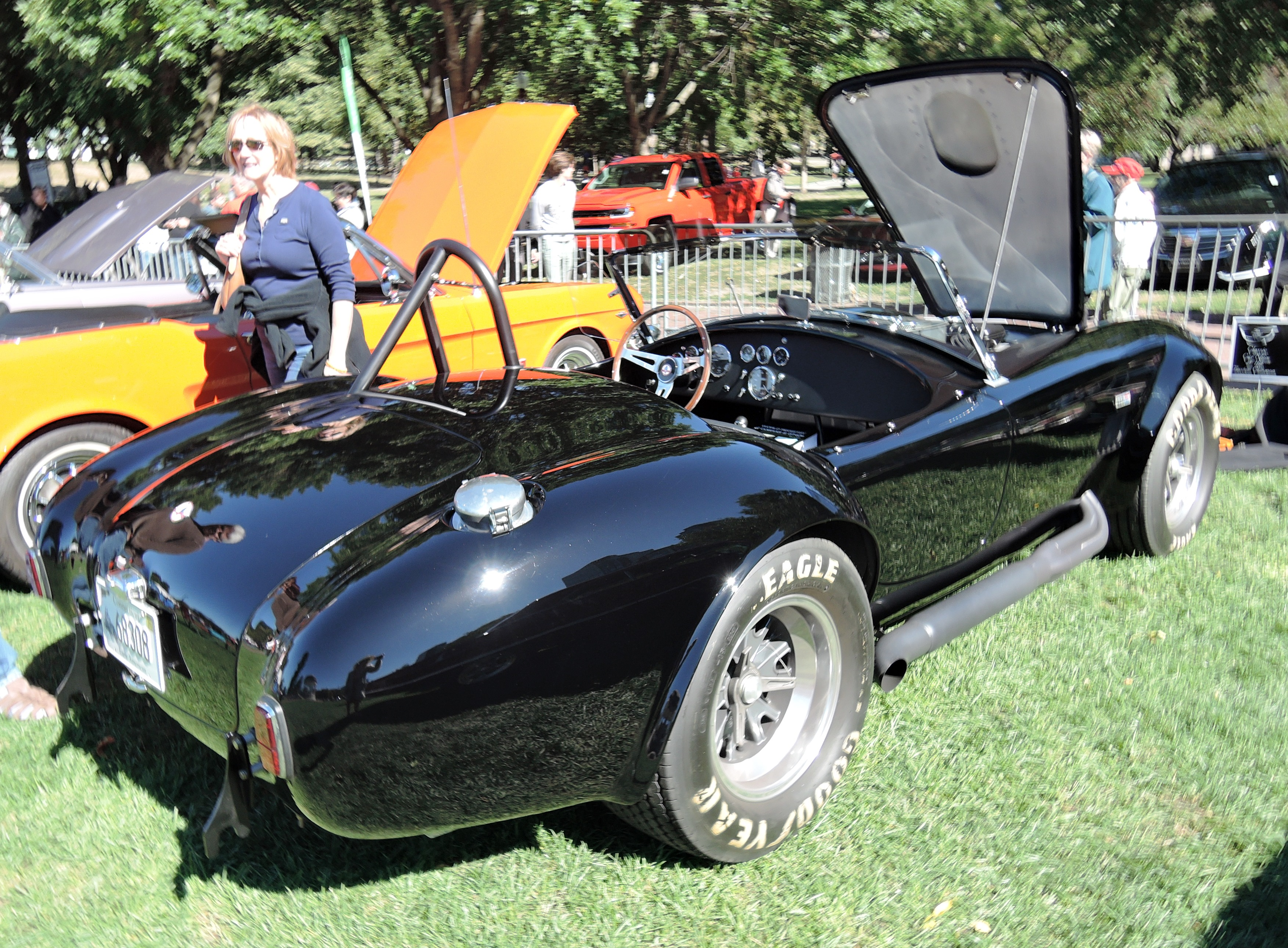black 1965 AC Cobra - The Boston Cup on Boston Common